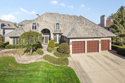 Orland Park Single Family Home For Sale: 10642 Misty Hill Road