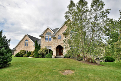 Lockport Single Family Home For Sale: 14218 Rynberk Court