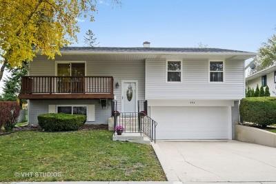 Buffalo Grove Single Family Home For Sale: 593 Elmwood Drive