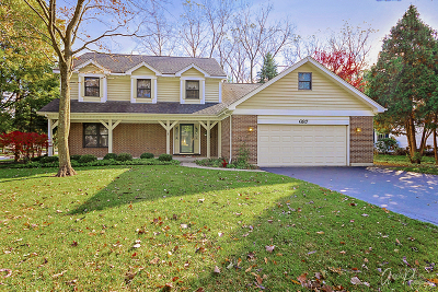 Grayslake Single Family Home For Sale: 687 West Trail N