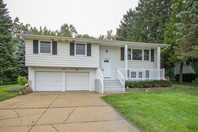 Schaumburg Single Family Home For Sale: 1514 Hartmann Drive