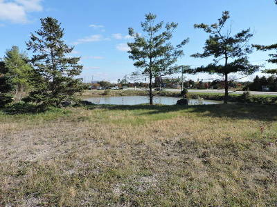 Mokena Residential Lots & Land For Sale: 9316 West 191 Street