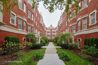 Oak Park Condo/Townhouse For Sale: 210 North Oak Park Avenue #1GG