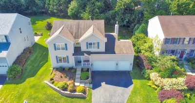 Carpentersville Single Family Home For Sale: 489 Rosewood Drive