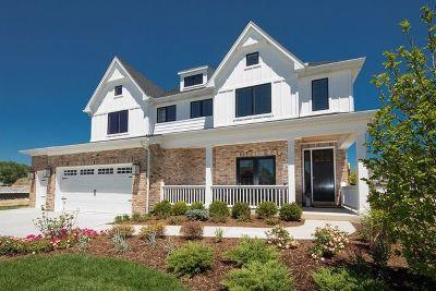 Homer Glen Single Family Home For Sale: 15225 South Mackenzie Drive
