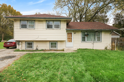 Du Page County Single Family Home For Sale: 3s137 Route 59 Highway