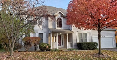 Naperville Single Family Home For Sale: 3840 Rosada Drive