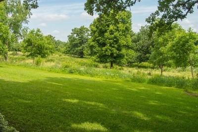 Ogle County Residential Lots & Land For Sale: 000 East Lightsville Road