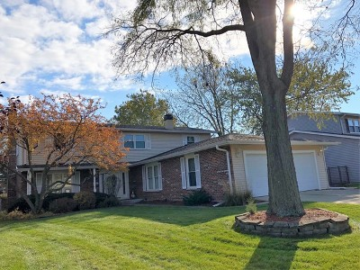 Mount Prospect Single Family Home For Sale: 1119 South Oakwood Drive