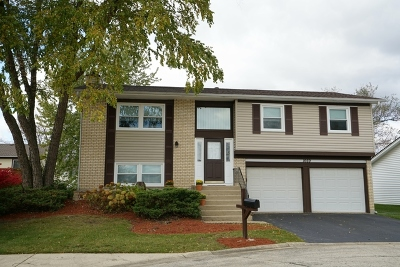Hoffman Estates Single Family Home For Sale: 1669 West Bayside Court