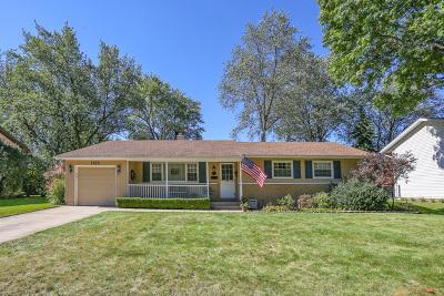 Palatine Single Family Home For Sale: 1163 East Paddock Drive