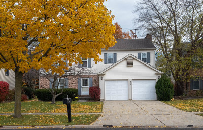 Buffalo Grove Single Family Home For Sale: 1355 Green Knolls Drive