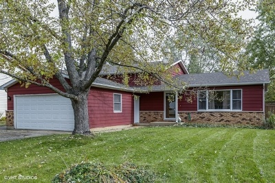 Crystal Lake Single Family Home For Sale: 6414 Martin Street