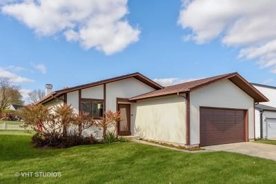 Streamwood Single Family Home For Sale: 216 Apple Hill Lane