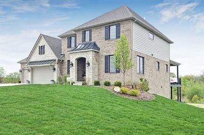 Homer Glen Single Family Home For Sale: 12009 West Monterey Drive