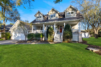 Downers Grove Single Family Home For Sale: 6127 Grand Avenue