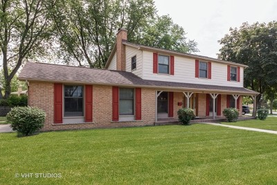 Palatine Single Family Home For Sale: 433 East Mill Valley Road