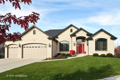 Orland Park Single Family Home For Sale: 10820 Sheridans Trail