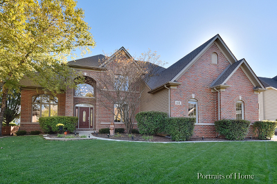 South Elgin Single Family Home Price Change: 641 Cole Drive