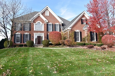 St. Charles Single Family Home For Sale: 3n940 Walt Whitman Road