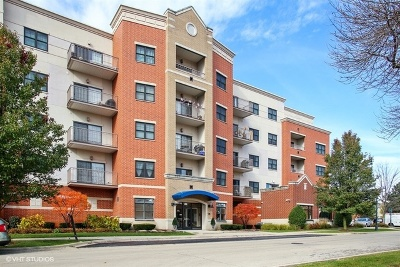 Roselle Condo/Townhouse For Sale: 14 South Prospect Street #504