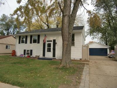 Romeoville Single Family Home For Sale: 767 Farragut Avenue