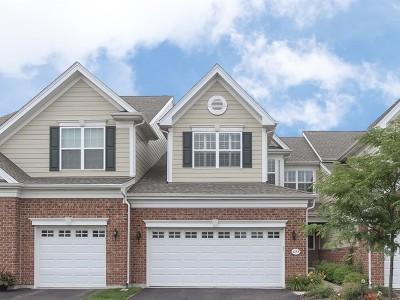 Elgin Condo/Townhouse For Sale: 1253 Falcon Ridge Drive