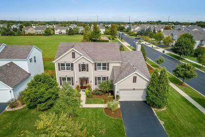 South Elgin Single Family Home For Sale: 33 West Ellington Court