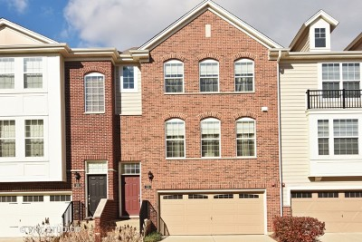 Schaumburg Condo/Townhouse For Sale: 23 Jasmine Court #2402