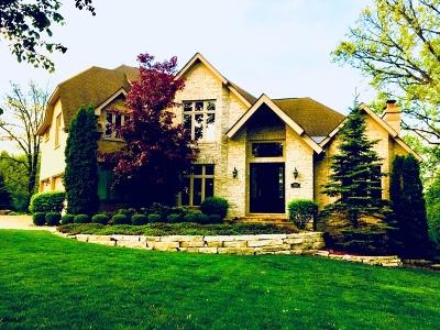 Burr Ridge Single Family Home For Sale: 302 Old Oak Court
