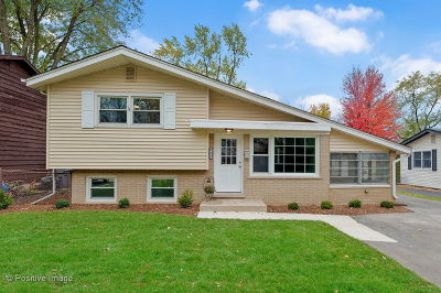 Glen Ellyn Single Family Home For Sale: 527 Lowden Avenue