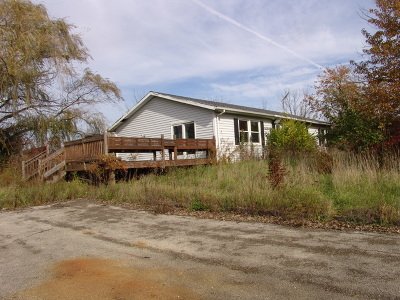 Monee Single Family Home For Sale: 10254 West Monee Manhattan Road