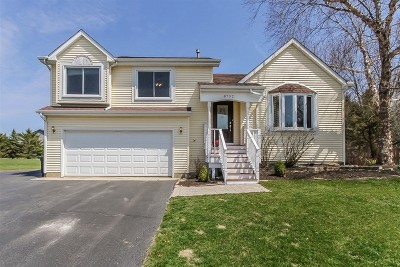 Spring Grove Single Family Home For Sale: 8702 Maureen Drive