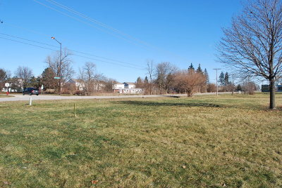 Plainfield Residential Lots & Land For Sale: 25705 Wolfs Crossing Road
