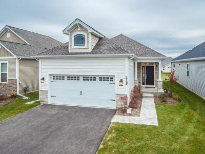 Addison Single Family Home For Sale: 215 Sunset Lane