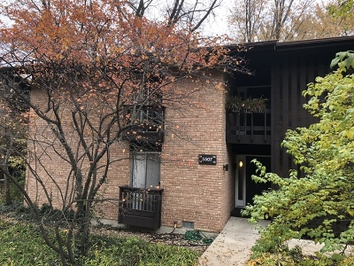 Lisle Condo/Townhouse For Sale: 5507 Lakeside Drive #2A