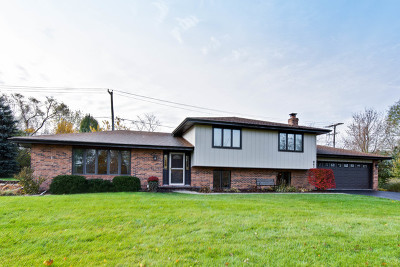 Palatine Single Family Home For Sale: 947 West Ellis Street