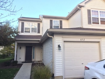 Naperville Condo/Townhouse For Sale: 852 Woodewind Drive