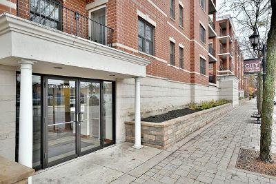 Elmhurst Condo/Townhouse For Sale: 200 North Addison Avenue #504