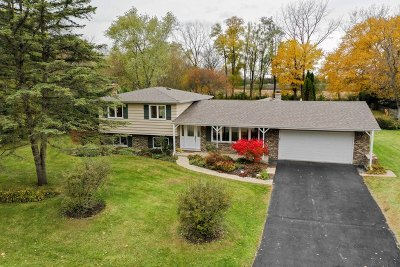 Lincolnshire Single Family Home For Sale: 23278 North Apple Hill Lane