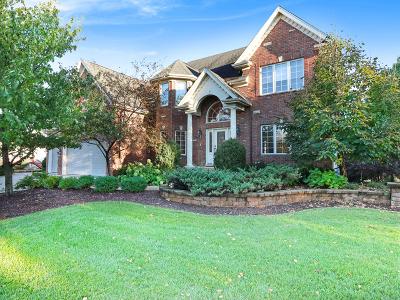 Naperville Single Family Home For Sale: 3204 Rollingridge Road