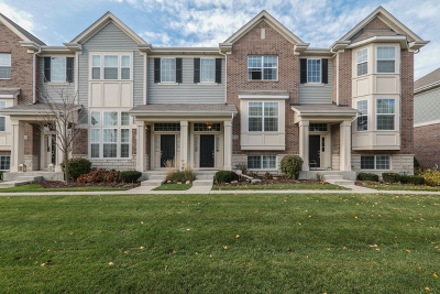 Naperville Condo/Townhouse For Sale: 2821 Henley Lane