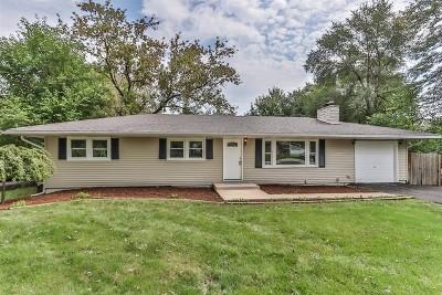 Wheaton Single Family Home For Sale: 0n461 Ellis Avenue