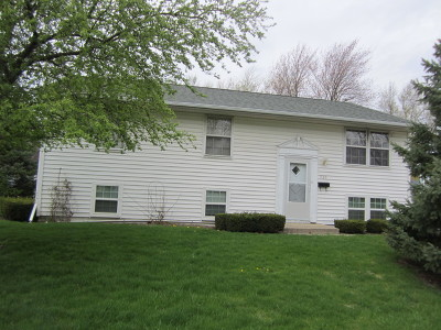 Streamwood Single Family Home For Sale: 920 Sunnydale Boulevard