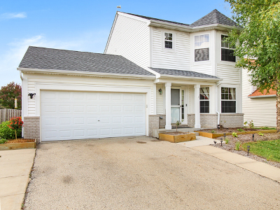 Romeoville Single Family Home For Sale: 426 North Kelly Court