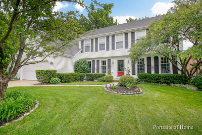 Naperville Single Family Home For Sale: 1577 Clemson Drive
