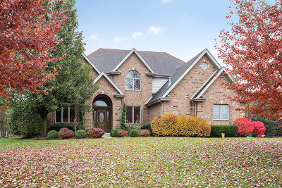 Homer Glen Single Family Home For Sale: 17965 South Foxhound Lane
