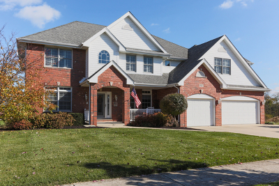 Mokena Single Family Home For Sale: 19217 Loveland Court