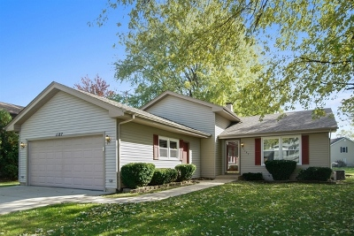 Bartlett Single Family Home For Sale: 1187 Independence Drive