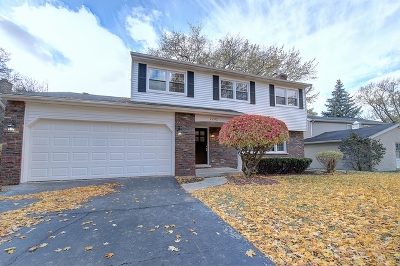 Downers Grove Single Family Home For Sale: 2242 Oxnard Drive